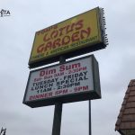Tom's Lotus Garden
