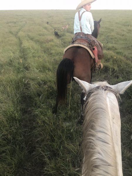 Flying W Ranch